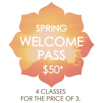 YN_Welcome Pg Button_Spring 2017 WPass_200dpi Final