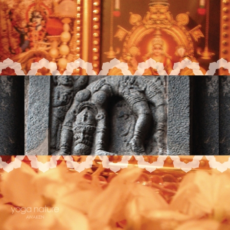 YN_W_S Post_MI_India 2014_150dpi