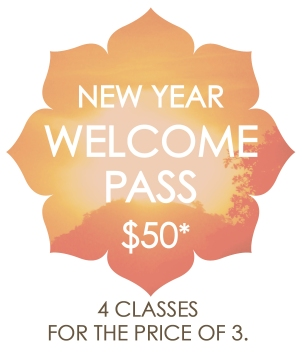 yn_welcome-pg-button_new-year-2017-wpass_200dpi-final
