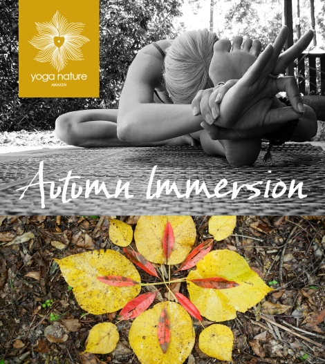 YN_Autumn Immersion_Main Graphic 2017 IG v