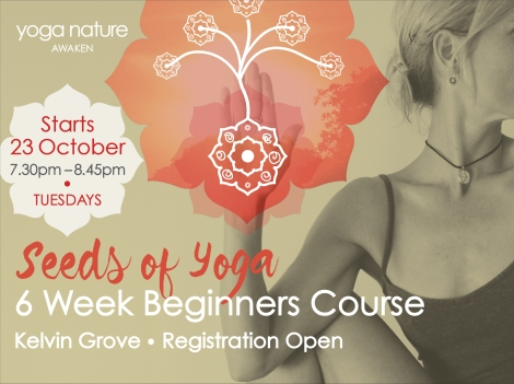 YN_Beginners Course Page Graphic_Oct 2018