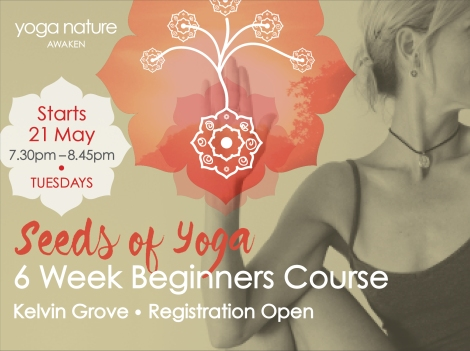 YN_Beginners Course Page Graphic_May 2019 F
