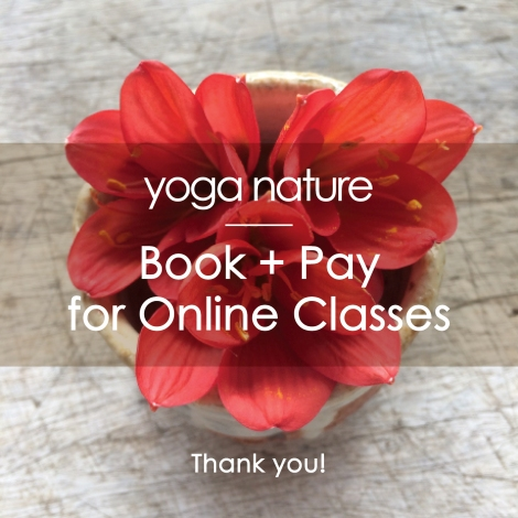 YN – Online Classes Book + Pay Main Image
