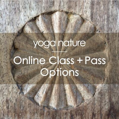 YN – Online Landing page – Class + Pass_200dpi