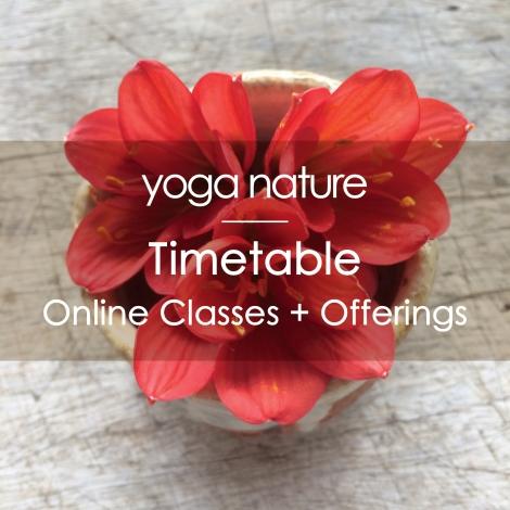 YN – Online Landing page – Timetable_200dpi
