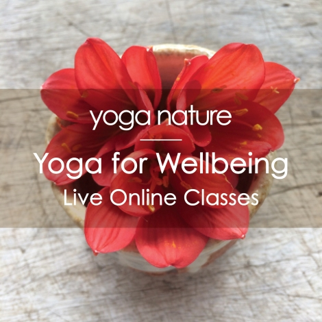 YN – Online Yoga for Wellbeing Main Image