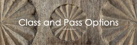 YN_Online Landing Page_Class + Pass header_200dpi