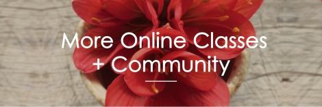 YN_Online Landing Page_Current Classes header April_200dpi
