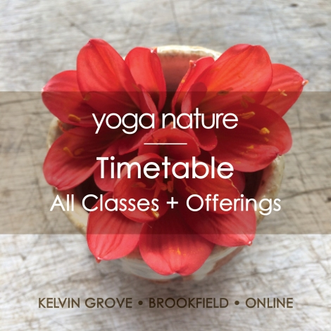 YN – Timetable – All Classes + Offerings - main graphic